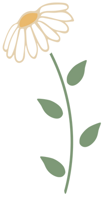 NSN-md_Color-Flower%20Icon_edited.png