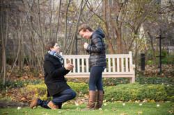 Northwestern Surprise Proposal
