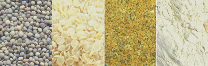 Guar Seeds, Guar Gum, Guar Gum Powder, Guar Meal, Guar Churi & Guar Korma