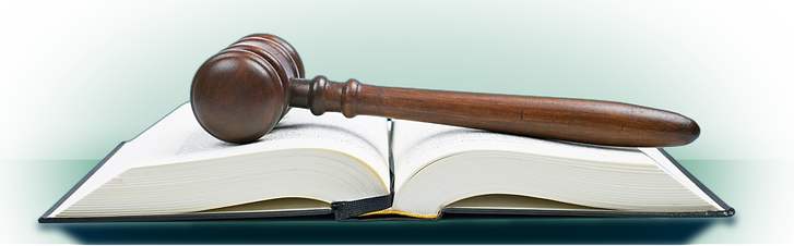 gavel-book.png