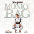 plane jane money bacg cover 2.jpg