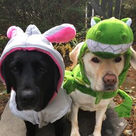 Lexie and Summer Ready For Halloween