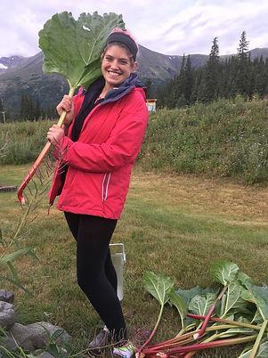 Sarah Hanley-harvesting rhubarb.JPG