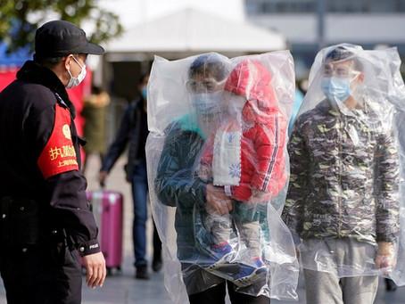 papel do magistério de direito ambiental em tempos de pandemia