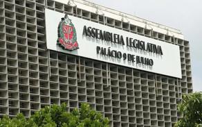 A SOBRERREPRESENTAÇÃO DO RELATOR ESPECIAL NA ASSEMBLEIA LEGISLATIVA PAULISTA