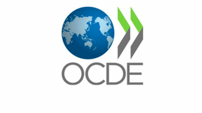 Guedes, Jair, Trump e OCDE: a compulsão de alto custo social