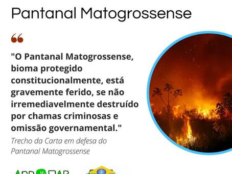 CARTA EM DEFESA DO PANTANAL MATOGROSSENSE