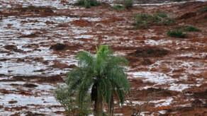 IBAP, SindiproesP, Planeta Verde e RENAP publicam notas sobre tragédia em brumadinho