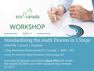 Standardizing Management System Audits