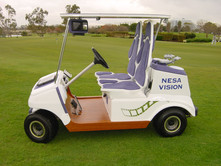 Nesa Vision Golf Cart