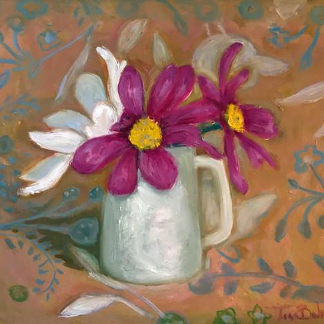 Cosmos, Rebecca's jug