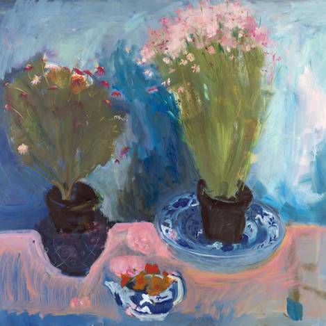 Two plants, teapot