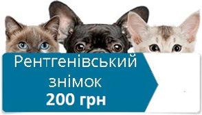61012e_900d04892da34aee9936d43c4f7f26f2-