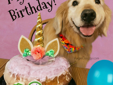 Ti's 12th Birthday! And Giveaway!