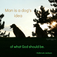 Man Is A Dog's Idea Of What God Should Be