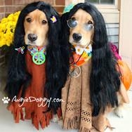 Halloween Hippies!