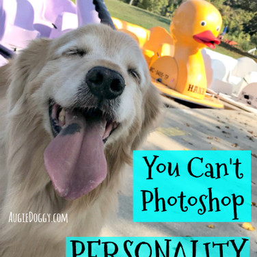 You Can't Photoshop Personality