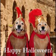 Halloween Centaurians!
