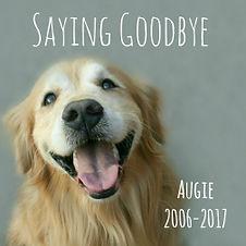 instagram-augie-goodbye-sidebar.jpg