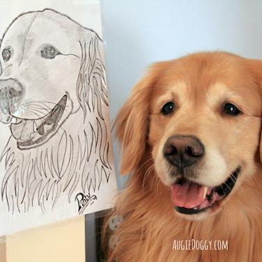 Augie Portrait