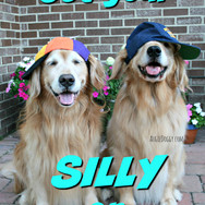 Get Your Silly On!
