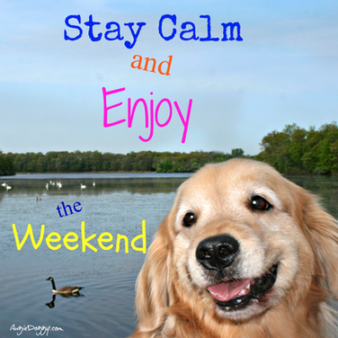 Stay Calm and Enjoy the Weekend