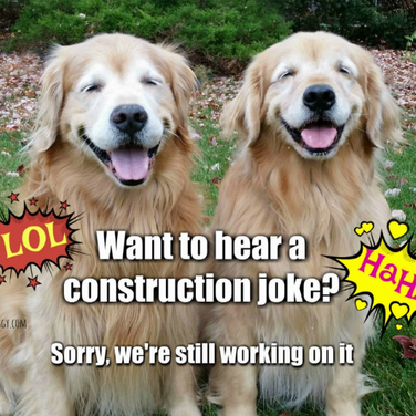 Funny Golden Retriever Construction Joke Meme Postcard