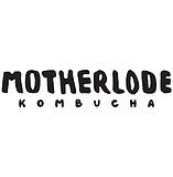 Motherlode.png