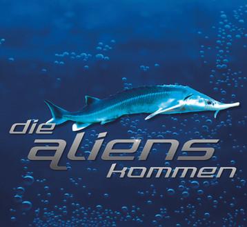 die aliens kommen