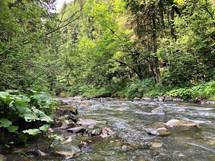 Wild River - Juillet 2020