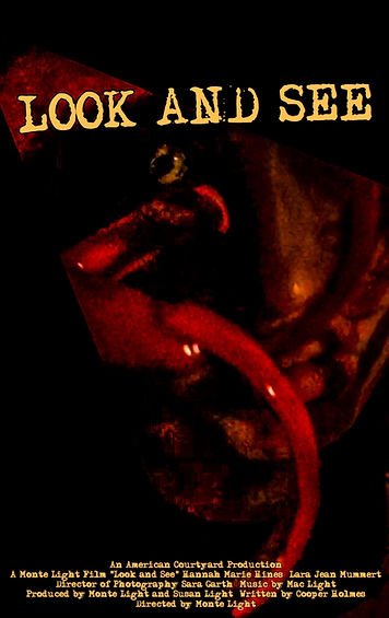 Look and See (2017) Poster.JPG