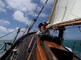 Driac under sail