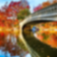 ny_autumn_happyhour_photo.webp