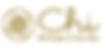Chi Logo-01.png
