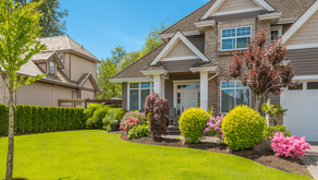 Best Ways to Enhance Your Commercial Property's Curb Appeal