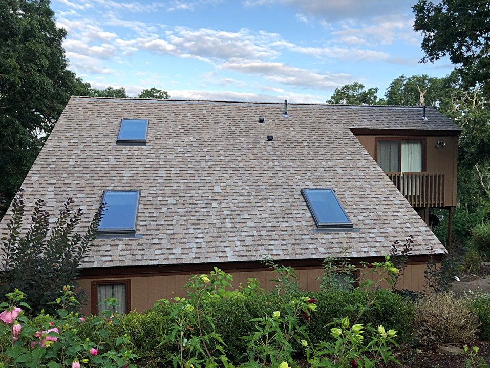 Beantown roof with Velux skylights