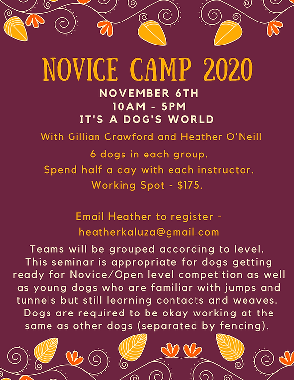 Novice Camp 2019 (3).png