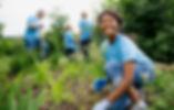 Los voluntarios-Jardín