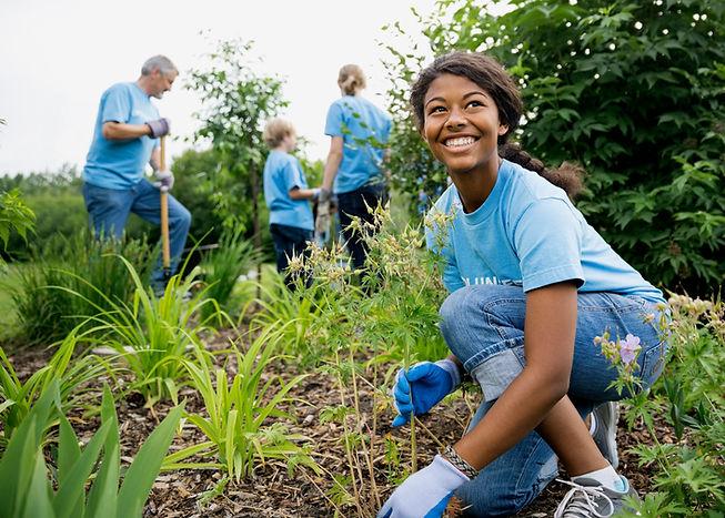 Freiwilligen-Garten