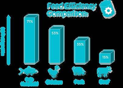 Feed Efficiency Diagram.png