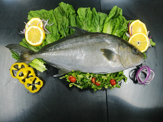Whole Round Baja Kanpachi Fish with Garn