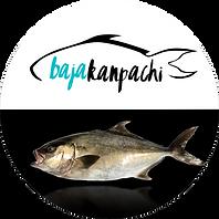 Baja Kanpachi Product Button for Mobile