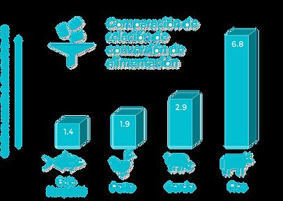 Feed Conversion Ratio Diagram Espanol.pn