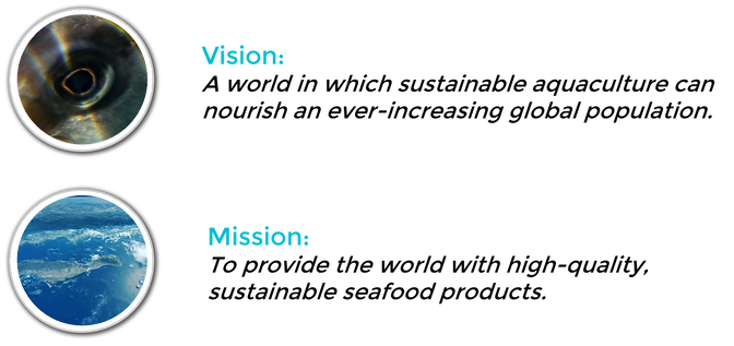 Vision and mission text and images only.