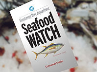 MBA Seafood Watch Consumer Guide Photo.j