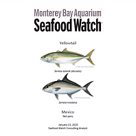 MBA Seafood Watch Front Page of Report.p