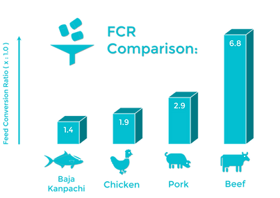 FCR Diagram.png