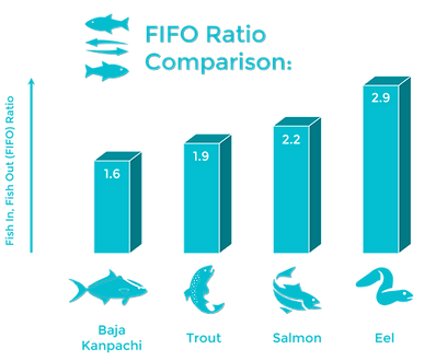 Fish In Fish Out Ratio Diagram Sustainab