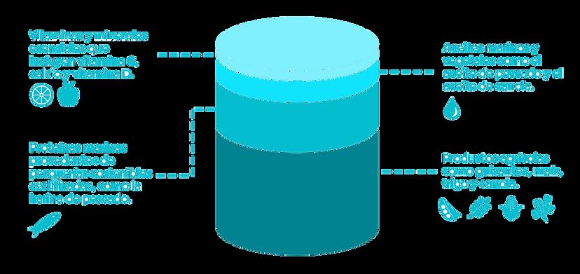 Feed Pellet Composition Diagram Espanol.