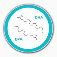 epa and dha in blue porthole.png